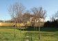Spazi esterni: il giardino laterale