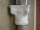 Capitello: impacco realizzato in fase di pulitura per rimuovere il deposito superficiale